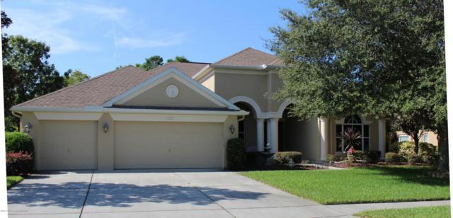 13214 Linzia Lane, Spring Hill, FL 34609 (MLS #2187227) :: The Hardy Team - RE/MAX Marketing Specialists