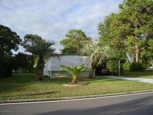 14621 Brookridge Boulevard, Brooksville, FL 34613 (MLS #2187339) :: The Hardy Team - RE/MAX Marketing Specialists