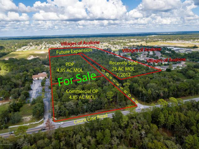 13393 County Line Road, Brooksville, FL 34609 (MLS #2187409) :: The Hardy Team - RE/MAX Marketing Specialists
