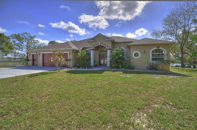 8525 Elgrove Street, Spring Hill, FL 34608 (MLS #2187412) :: The Hardy Team - RE/MAX Marketing Specialists