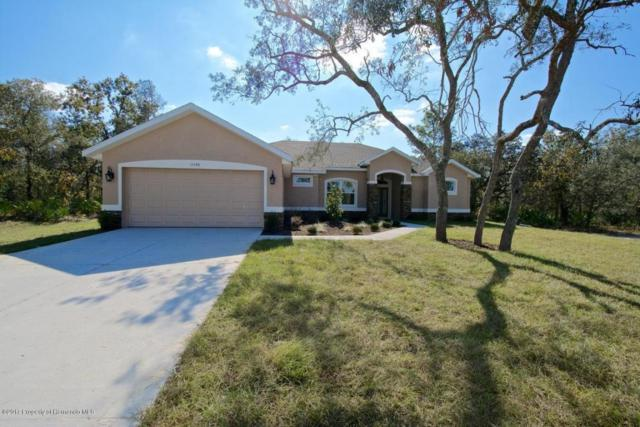 12056 Penguin Avenue, Weeki Wachee, FL 34614 (MLS #2187433) :: The Hardy Team - RE/MAX Marketing Specialists