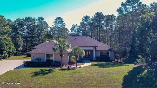 9440 Hernando Ridge Road, Weeki Wachee, FL 34613 (MLS #2187824) :: The Hardy Team - RE/MAX Marketing Specialists