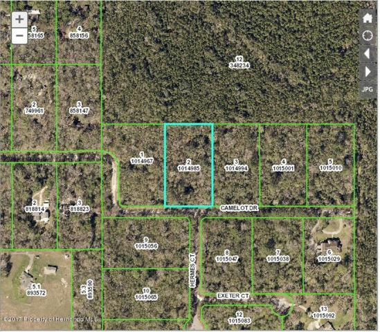 0 Camelot (Lot 2) Drive, Brooksville, FL 34601 (MLS #2187940) :: The Hardy Team - RE/MAX Marketing Specialists