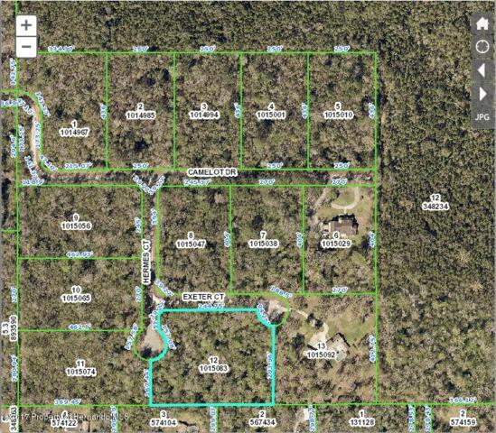 0 Hermes (Lot 12) Court, Brooksville, FL 34601 (MLS #2187955) :: The Hardy Team - RE/MAX Marketing Specialists