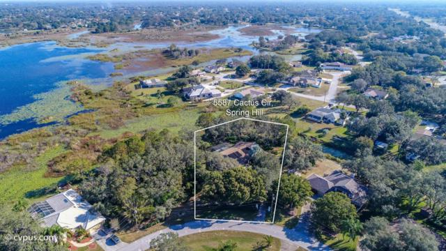 5587 Cactus Circle, Spring Hill, FL 34606 (MLS #2188140) :: The Hardy Team - RE/MAX Marketing Specialists
