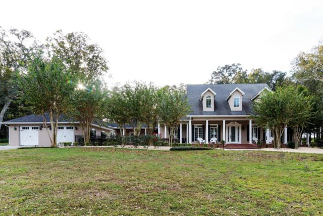 4065 Majestic Oak, Brooksville, FL 34602 (MLS #2188145) :: The Hardy Team - RE/MAX Marketing Specialists
