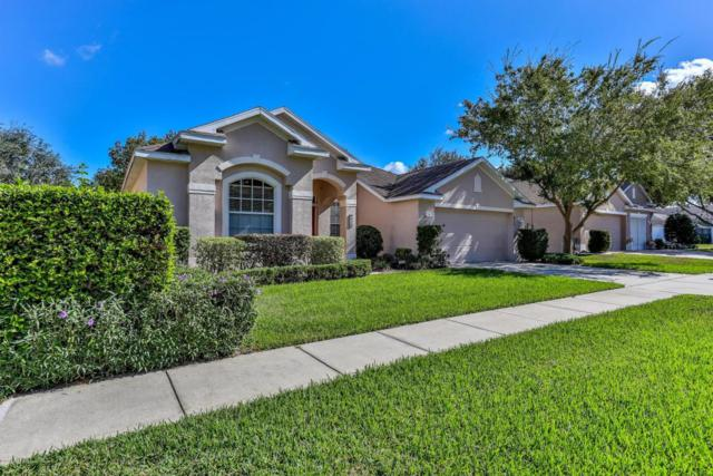 420 Quane Avenue, Spring Hill, FL 34609 (MLS #2188153) :: The Hardy Team - RE/MAX Marketing Specialists
