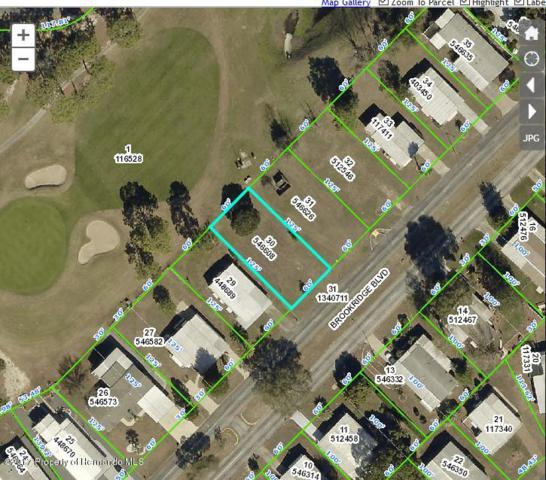 14849 Brookridge Boulevard, Brooksville, FL 34613 (MLS #2188164) :: The Hardy Team - RE/MAX Marketing Specialists