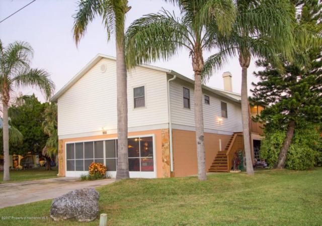 3338 Fernleaf Drive, Hernando Beach, FL 34607 (MLS #2188182) :: The Hardy Team - RE/MAX Marketing Specialists