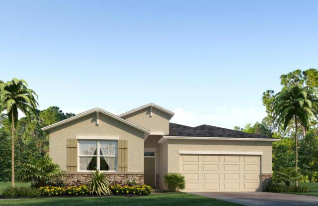 13404 Blythewood Drive, Spring Hill, FL 34609 (MLS #2188232) :: The Hardy Team - RE/MAX Marketing Specialists