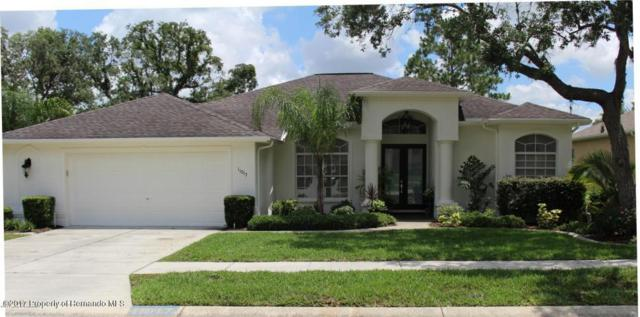 11017 Audie Brook Drive, Spring Hill, FL 34608 (MLS #2188771) :: The Hardy Team - RE/MAX Marketing Specialists