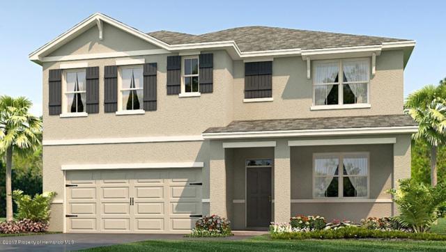 4032 Bramblewood Loop, Spring Hill, FL 34609 (MLS #2188810) :: The Hardy Team - RE/MAX Marketing Specialists