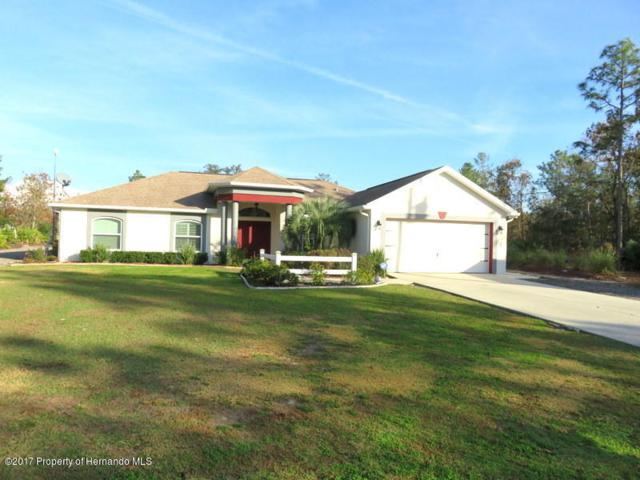 18328 Maberly Road, Weeki Wachee, FL 34614 (MLS #2188839) :: The Hardy Team - RE/MAX Marketing Specialists