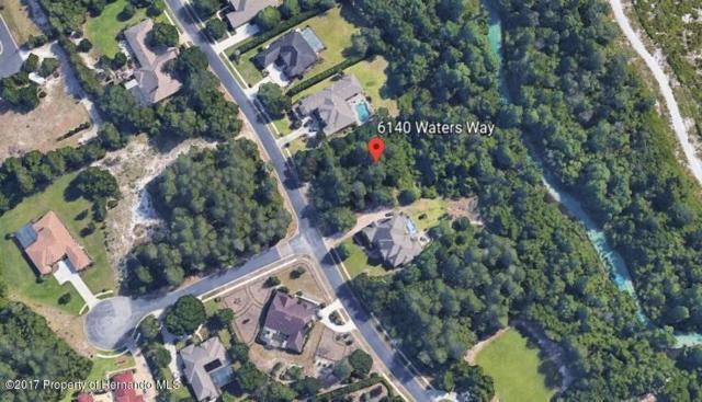 6140 Waters Way, Weeki Wachee, FL 34607 (MLS #2188853) :: The Hardy Team - RE/MAX Marketing Specialists