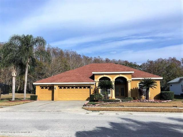 8007 Maidencane Drive, Trinity, FL 34655 (MLS #2189507) :: The Hardy Team - RE/MAX Marketing Specialists