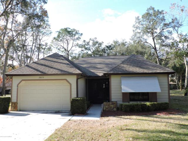 2623 Blue Ridge Circle, Spring Hill, FL 34606 (MLS #2189543) :: The Hardy Team - RE/MAX Marketing Specialists