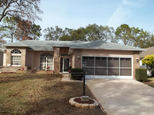 3033 Saw Mill Lane, Spring Hill, FL 34606 (MLS #2189653) :: The Hardy Team - RE/MAX Marketing Specialists