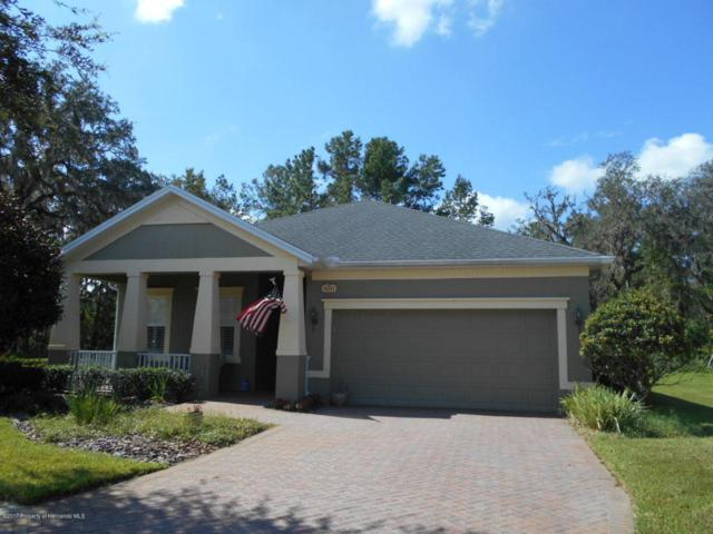 5051 Endview Pass, Brooksville, FL 34601 (MLS #2189683) :: The Hardy Team - RE/MAX Marketing Specialists