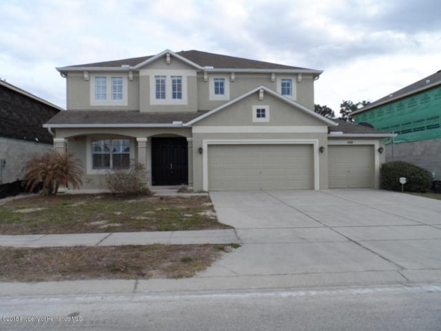 4046 Bramblewood Loop, Spring Hill, FL 34609 (MLS #2189940) :: The Hardy Team - RE/MAX Marketing Specialists
