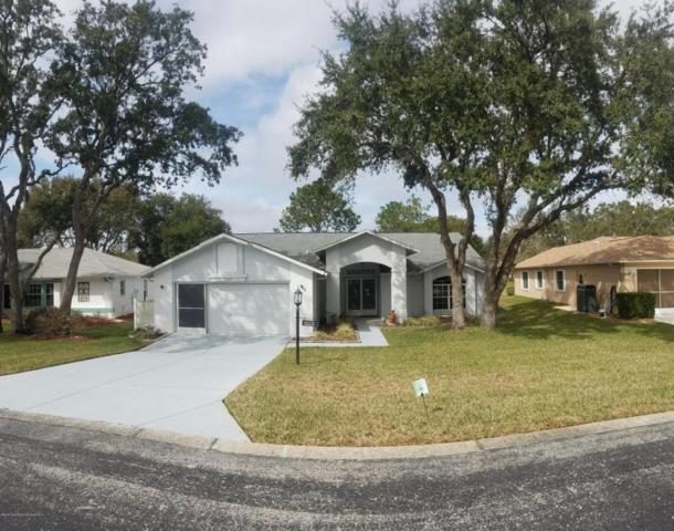 7339 Rosemont Lane, Spring Hill, FL 34606 (MLS #2189967) :: The Hardy Team - RE/MAX Marketing Specialists
