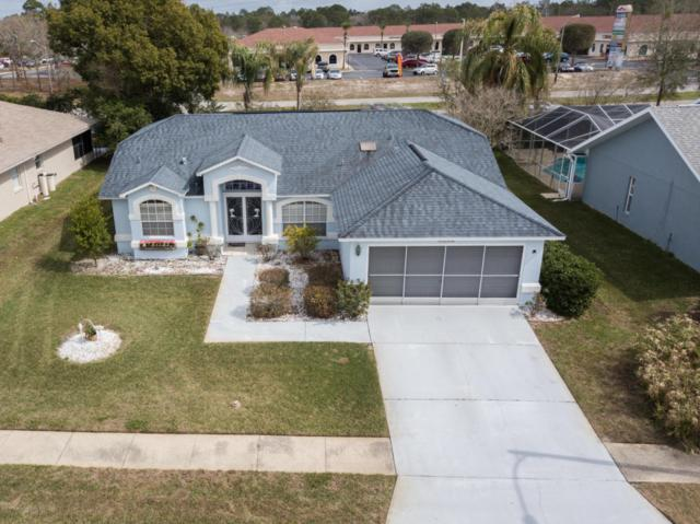 1198 Muscovy Drive, Spring Hill, FL 34608 (MLS #2190124) :: The Hardy Team - RE/MAX Marketing Specialists