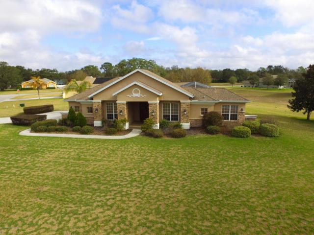 2422 Caribou, Spring Hill, FL 34608 (MLS #2190198) :: The Hardy Team - RE/MAX Marketing Specialists