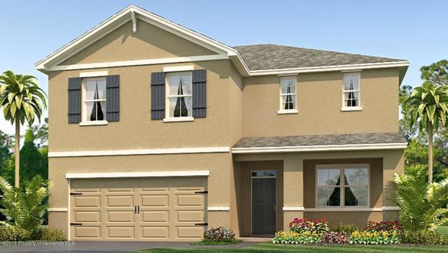 4022 Bramblewood Loop, Spring Hill, FL 34609 (MLS #2190261) :: The Hardy Team - RE/MAX Marketing Specialists