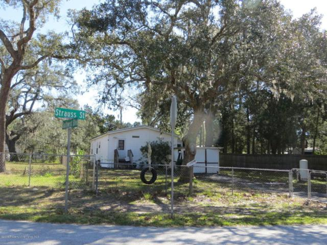 3220 Strauss Street, Weeki Wachee, FL 34606 (MLS #2190280) :: The Hardy Team - RE/MAX Marketing Specialists