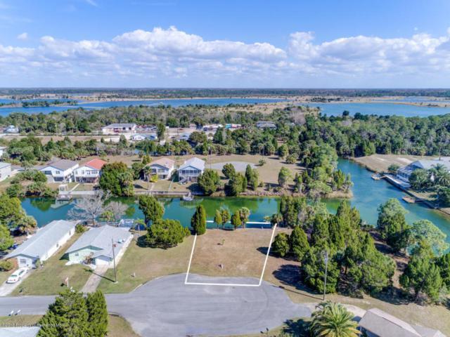 Lot 24 Sea Grape Drive, Hernando Beach, FL 34607 (MLS #2190290) :: The Hardy Team - RE/MAX Marketing Specialists