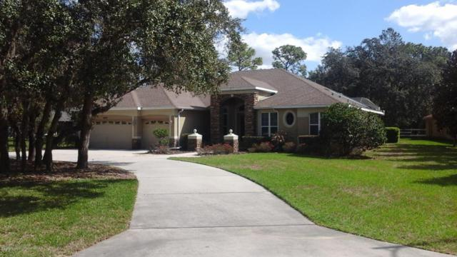 4298 Rachel Boulevard, Spring Hill, FL 34607 (MLS #2190293) :: The Hardy Team - RE/MAX Marketing Specialists