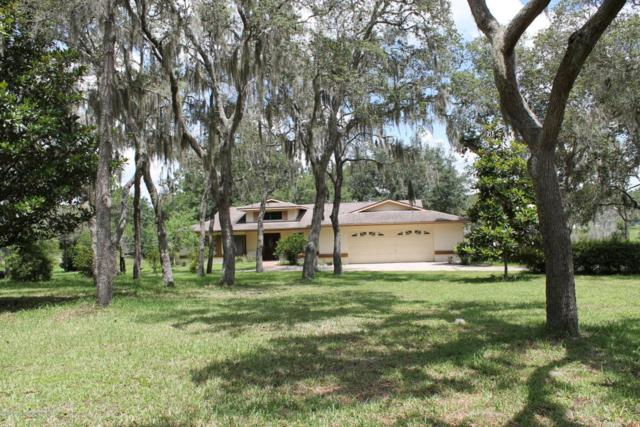 18750 Lansford Drive, Hudson, FL 34667 (MLS #2190297) :: The Hardy Team - RE/MAX Marketing Specialists