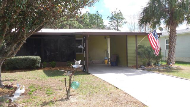 7224 Fitzpatrick Avenue, Brooksville, FL 34613 (MLS #2190312) :: The Hardy Team - RE/MAX Marketing Specialists