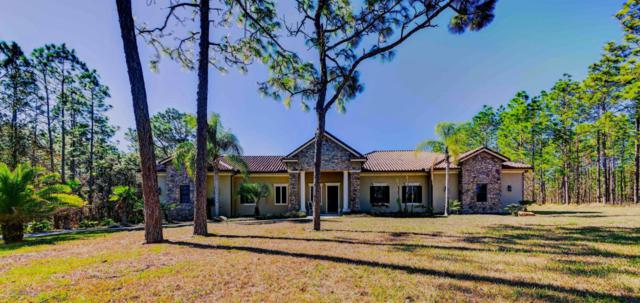 5403 Golddust Road, Spring Hill, FL 34609 (MLS #2190332) :: The Hardy Team - RE/MAX Marketing Specialists