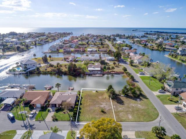 Lot 12 5th Isle Drive, Hernando Beach, FL 34607 (MLS #2190351) :: The Hardy Team - RE/MAX Marketing Specialists