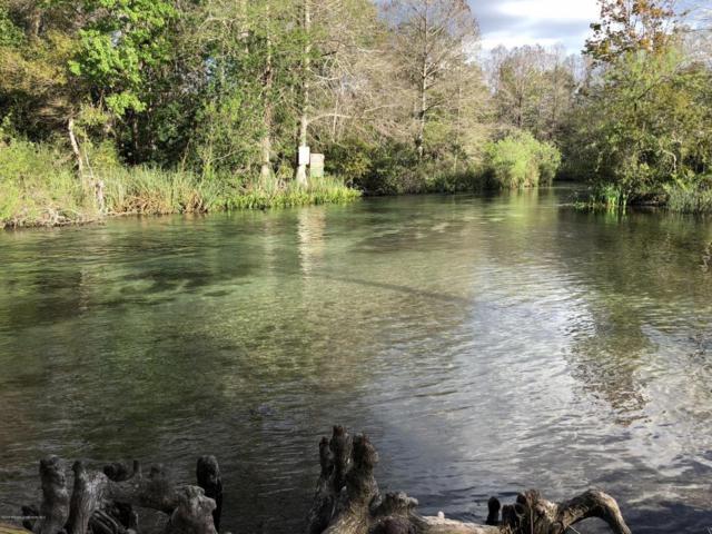 6401 River Lodge, Weeki Wachee, FL 34607 (MLS #2190401) :: The Hardy Team - RE/MAX Marketing Specialists