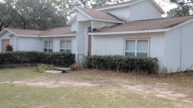16006 Forzando Ave, Brooksville, FL 34604 (MLS #2190421) :: The Hardy Team - RE/MAX Marketing Specialists