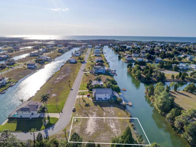 Lot 1 Amberjack Drive, Hernando Beach, FL 34607 (MLS #2190700) :: The Hardy Team - RE/MAX Marketing Specialists