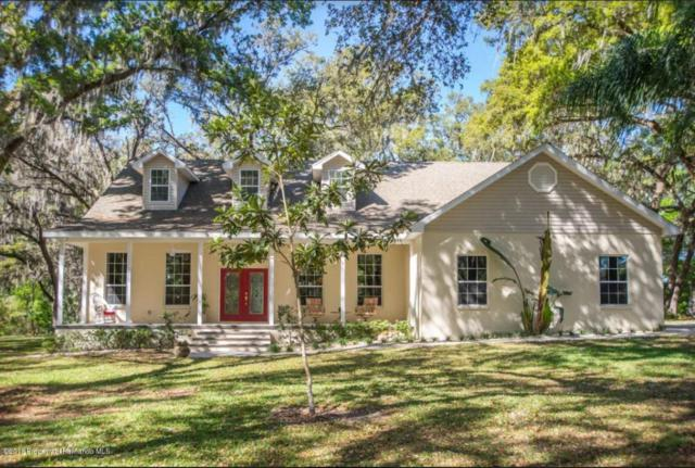 7321 Charlies Place, Brooksville, FL 34601 (MLS #2190711) :: The Hardy Team - RE/MAX Marketing Specialists