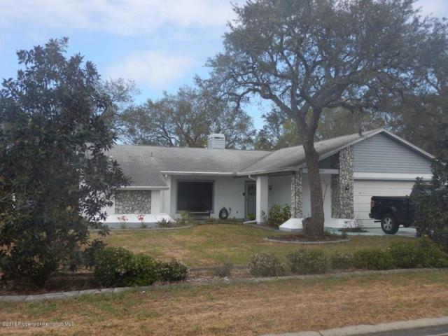 5019 Plumosa Street, Spring Hill, FL 34607 (MLS #2190838) :: The Hardy Team - RE/MAX Marketing Specialists