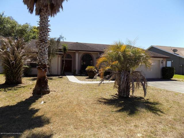 7362 Botanical Avenue, Spring Hill, FL 34607 (MLS #2190967) :: The Hardy Team - RE/MAX Marketing Specialists