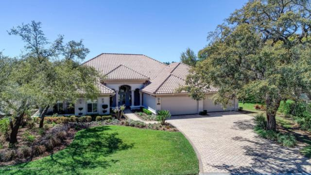 7305 Royal Oak Drive, Spring Hill, FL 34607 (MLS #2190989) :: The Hardy Team - RE/MAX Marketing Specialists
