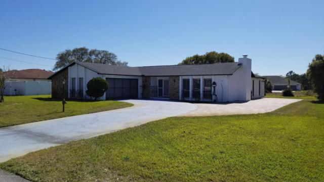 203 Callaway Avenue, Spring Hill, FL 34606 (MLS #2190991) :: The Hardy Team - RE/MAX Marketing Specialists