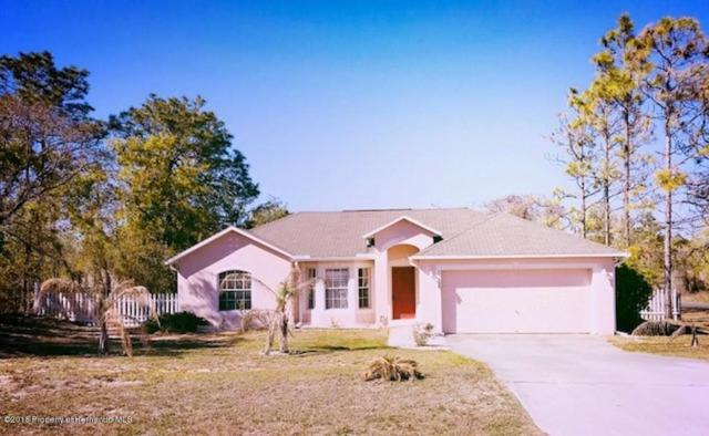 13139 Papercraft, Weeki Wachee, FL 34614 (MLS #2190992) :: The Hardy Team - RE/MAX Marketing Specialists