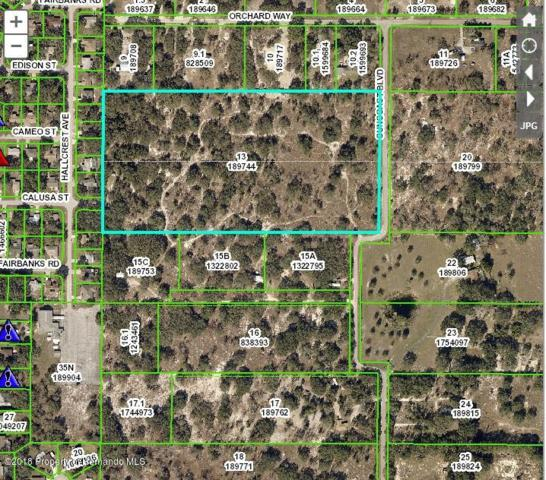 Address Not Published, Spring Hill, FL 34608 (MLS #2191048) :: The Hardy Team - RE/MAX Marketing Specialists