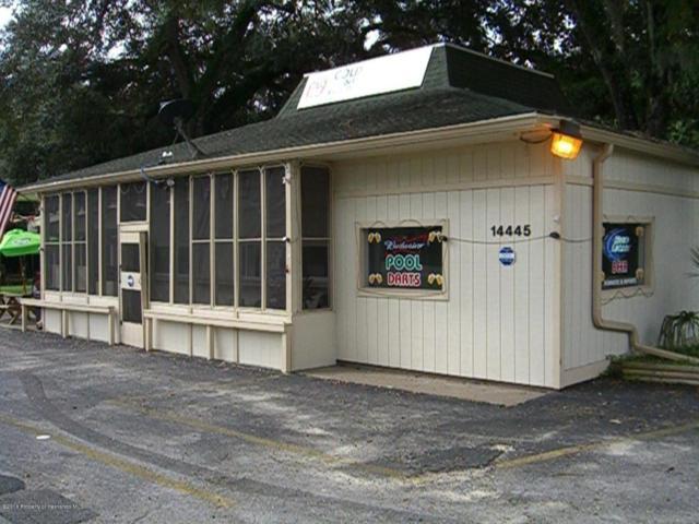 14445 Ponce De Leon Boulevard, Brooksville, FL 34601 (MLS #2191105) :: The Hardy Team - RE/MAX Marketing Specialists