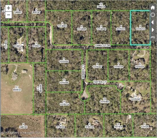 0 Camelot (Lot 5) Drive, Brooksville, FL 34601 (MLS #2191429) :: The Hardy Team - RE/MAX Marketing Specialists