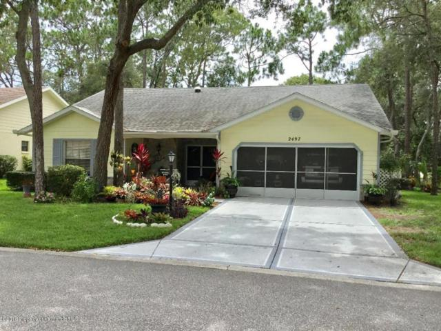 2497 Brooklawn, Spring Hill, FL 34606 (MLS #2191619) :: The Hardy Team - RE/MAX Marketing Specialists