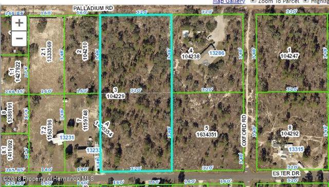 13252 Palladium Road, Brooksville, FL 34613 (MLS #2191779) :: The Hardy Team - RE/MAX Marketing Specialists