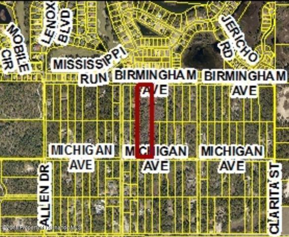 0 Birmingham Avenue, Weeki Wachee, FL 34613 (MLS #2191788) :: The Hardy Team - RE/MAX Marketing Specialists
