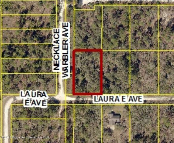 0 Laura E Avenue, Weeki Wachee, FL 34614 (MLS #2191802) :: The Hardy Team - RE/MAX Marketing Specialists